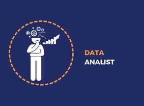 Data Analist