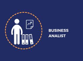 Business Analist